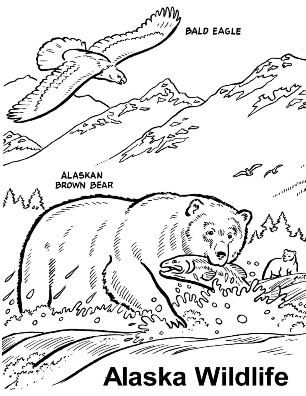 Wildlife Coloring Pages Best Free Wildlife Coloring Book Design Decoration